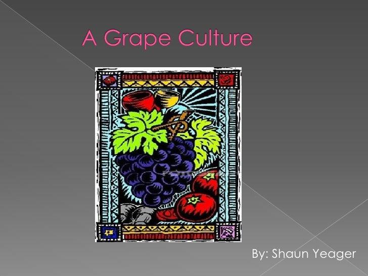 A Grape Culture Power Point