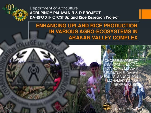 Department of Agriculture AGRI-PINOY PALAYAN R & D PROJECT DA-RFO XII- CFCST Upland Rice Research Project  ENHANCING UPLAN...