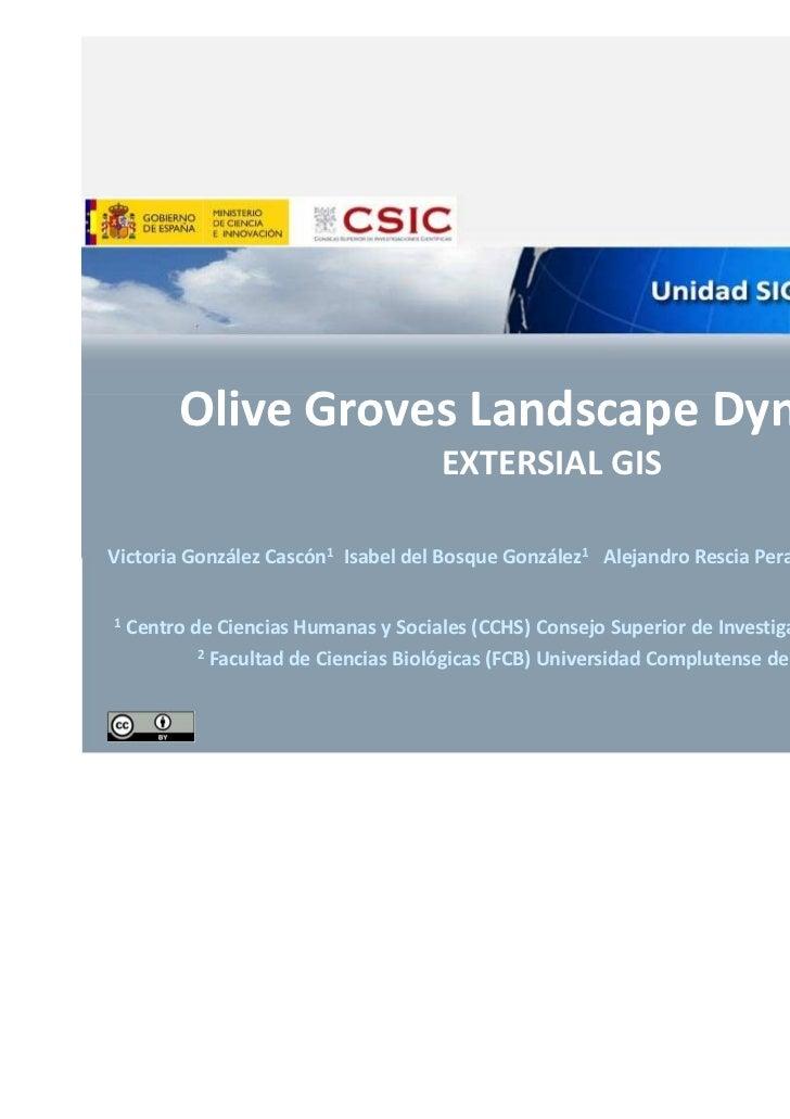 Olive Groves Landscape Dynamics                                       EXTERSIAL GISVictoria González Cascón1 Isabel del Bo...