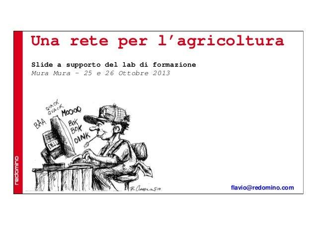 Una rete per l'agricoltura Slide a supporto del lab di formazione Mura Mura – 25 e 26 Ottobre 2013  flavio@redomino.com