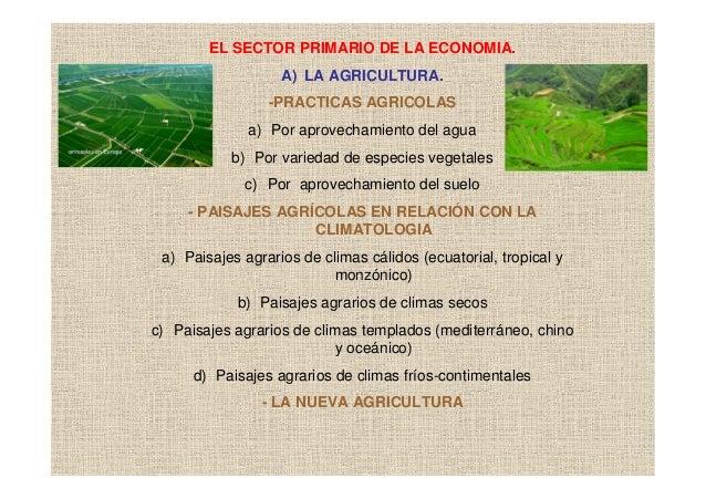 EL SECTOR PRIMARIO DE LA ECONOMIA.                   A) LA AGRICULTURA.                 -PRACTICAS AGRICOLAS              ...