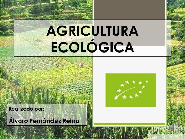 AGRICULTURA ECOLÓGICA  Realizado por:  Álvaro Fernández Reina