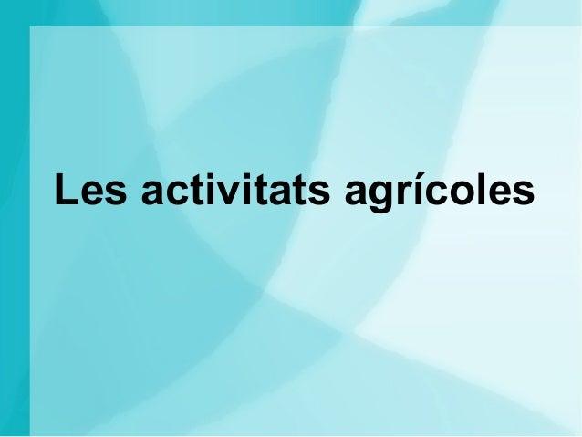 Les activitats agrícoles