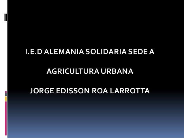 Agricultura jorge