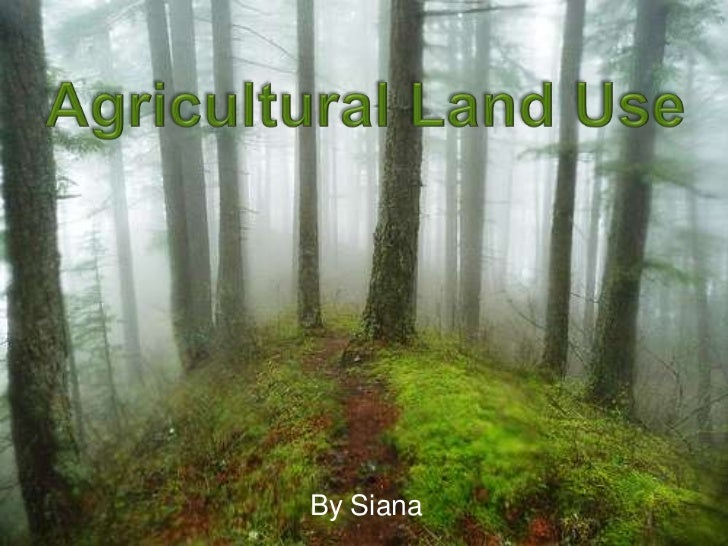 Siana's Agricultural Land Use Presentation