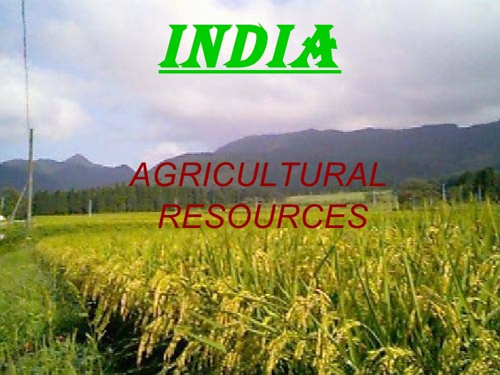 INDIA <ul><li>AGRICULTURAL  </li></ul><ul><li>RESOURCES </li></ul>