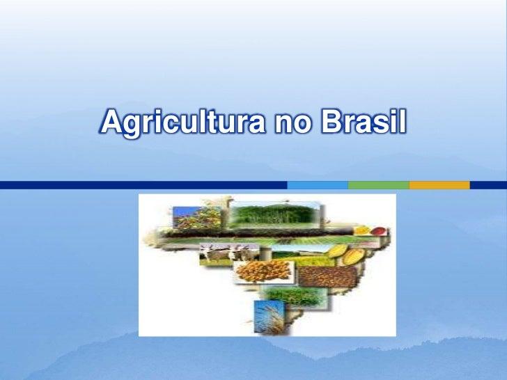 Agricultura no brasil