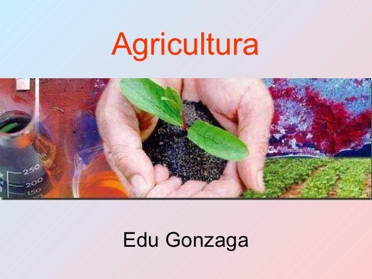Agricultura Prof Edu Gonzaga 2011