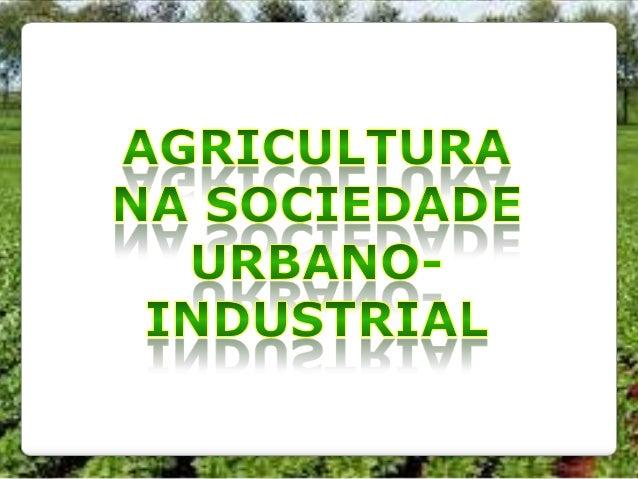 Agricultura na sociedade urbano-industrial