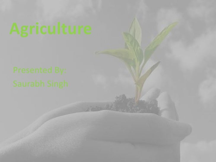 Agriculture<br />Presented By:<br />SaurabhSingh<br />