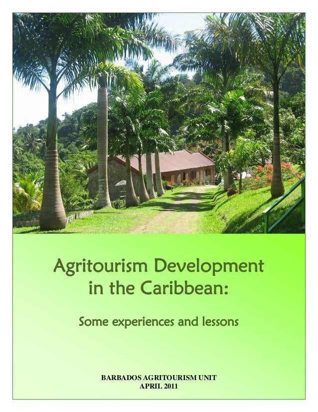 tourism in the caribbean essay