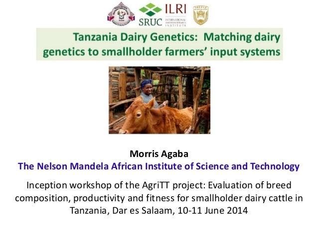 Tanzania dairy genetics: Matching dairy genetics to smallholder farmers' input systems