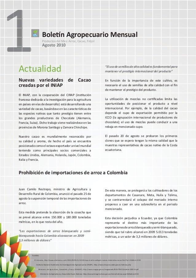 1Boletín Agropecuario MensualProductos del Mes: Arroz, Cacao, FréjolAgosto 2010ActualidadNuevas variedades de Cacaocreadas...