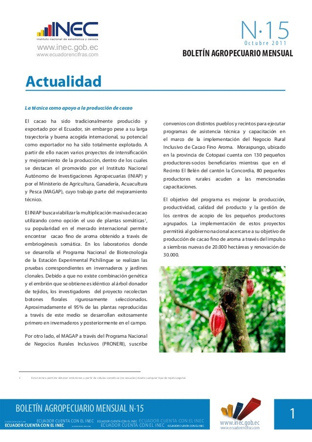 Agro15[1]cacao