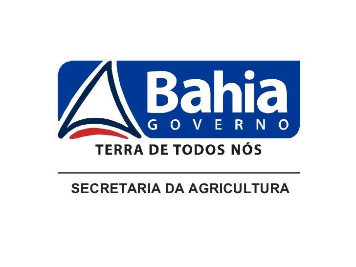 Perfil da Cafeicultura da Bahia Pensando o Futuro - Agrocafé 2011