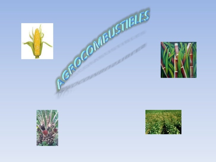 Agrocombustibles final