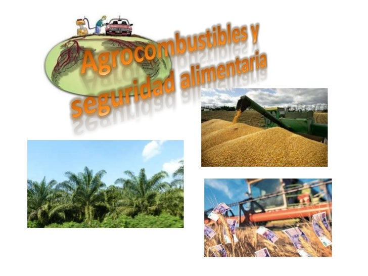 • Son combustibles líquidos que se extraen a  partir de la producción de materias primas  vegetales.
