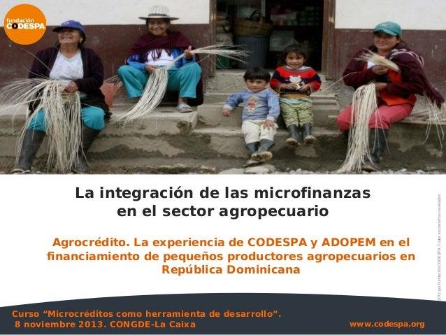 La integración de las microfinanzas