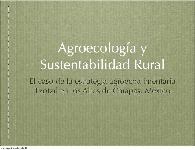 Estrategias agroecoalimentarias tzotziles para la reproducción social rural