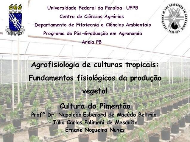 Universidade Federal da Paraíba– UFPB           Centro de Ciências Agrárias Departamento de Fitotecnia e Ciências Ambienta...