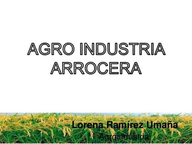 Agro industria arrocera