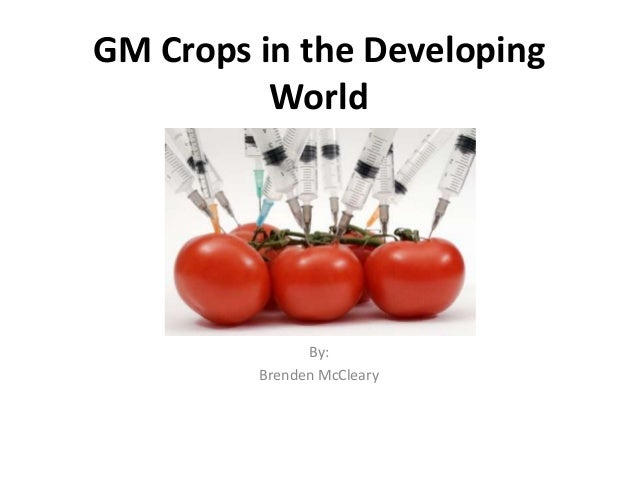 GM Crops in the Developing World  By: Brenden McCleary