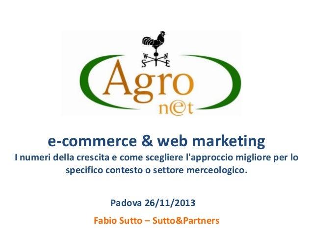 e-commerce & web marketing I numeri della crescita e come scegliere l'approccio migliore per lo specifico contesto o setto...