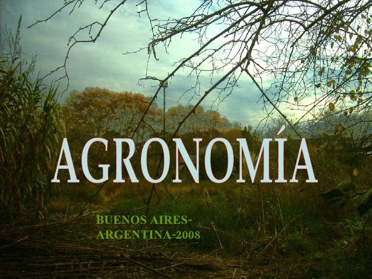BUENOS AIRES-ARGENTINA-2008 AGRONOMÍA