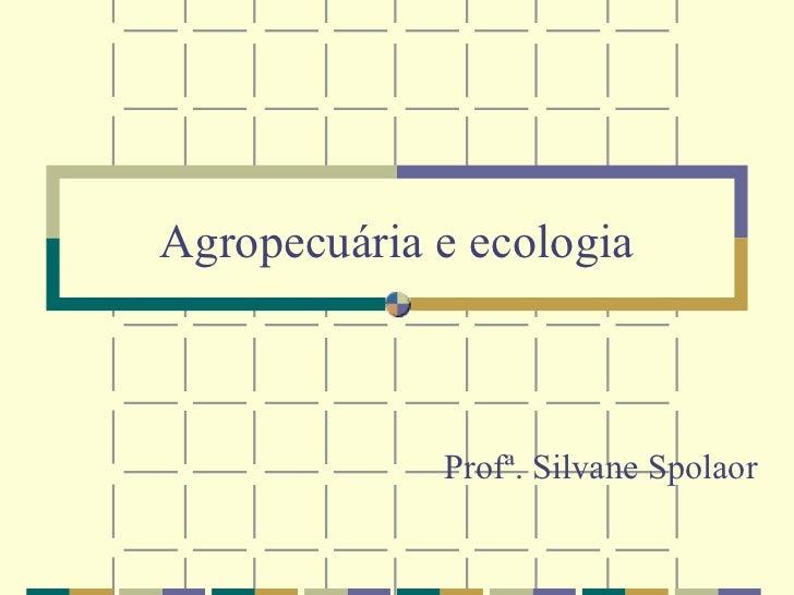 Agropecuária e ecologia             Profª. Silvane Spolaor