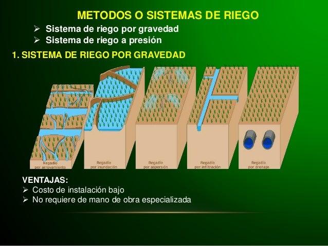 Agrotecnia 6 riego - Tipos de riego por goteo ...
