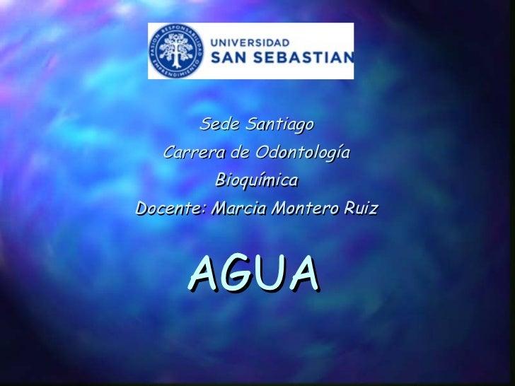 AGUA Sede Santiago Carrera de Odontología Bioquímica Docente: Marcia Montero Ruiz