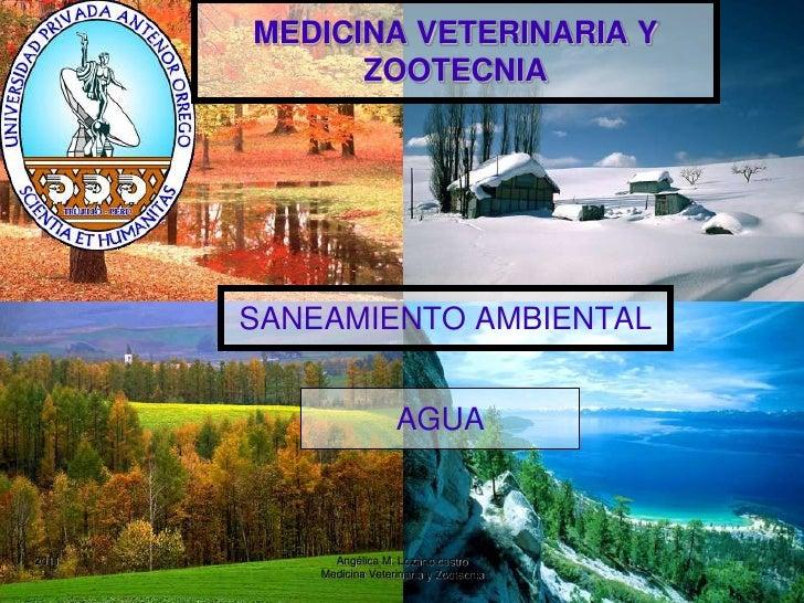 MEDICINA VETERINARIA Y ZOOTECNIA<br />SANEAMIENTO AMBIENTAL<br />1<br />Angélica M. Lozano castro                         ...