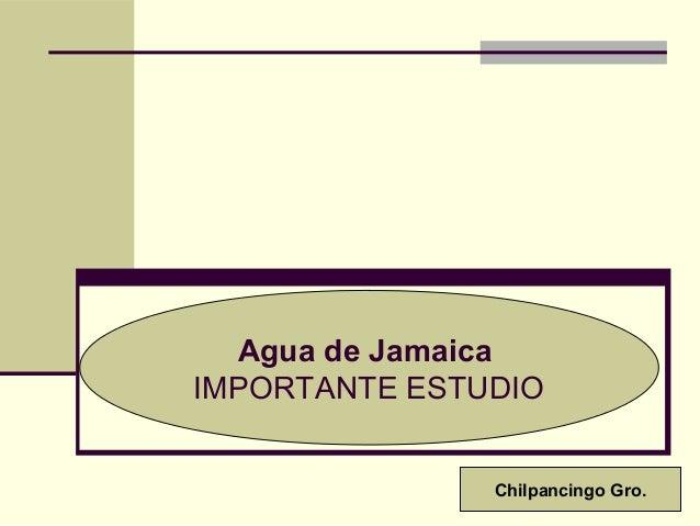 Agua de Jamaica IMPORTANTE ESTUDIO Chilpancingo Gro.