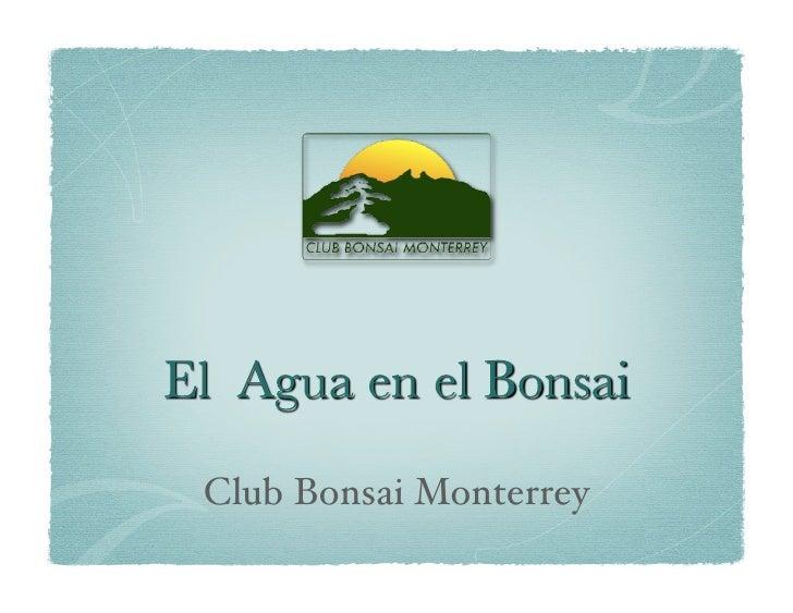 Club Bonsai Monterrey