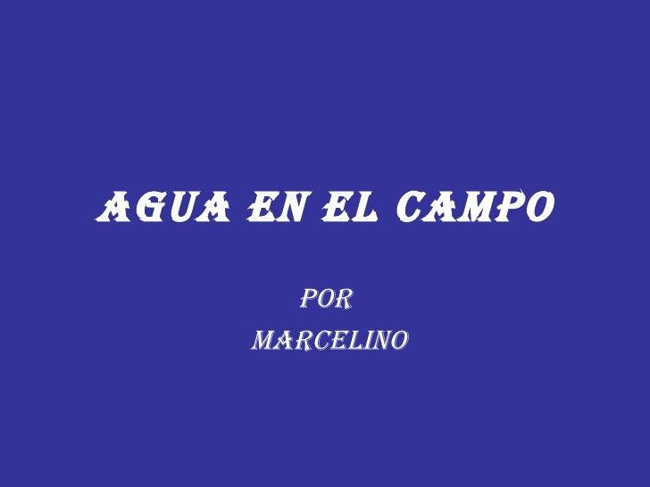 AGUA EN EL CAMPO Por MARCELINO