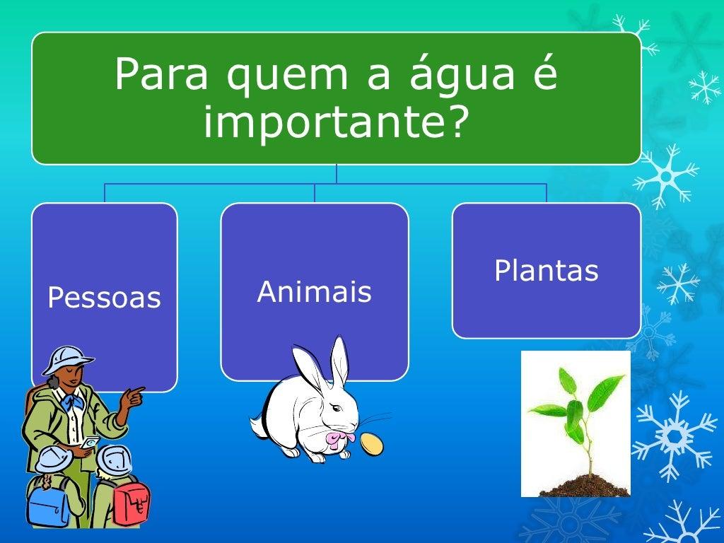 Para quem a água é        importante?                    PlantasPessoas   Animais