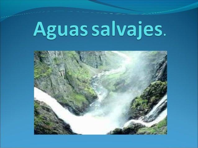 La acción geológica de las aguas salvajes depende de los materiales sobre los que actúa. Los materiales del terreno pueden...