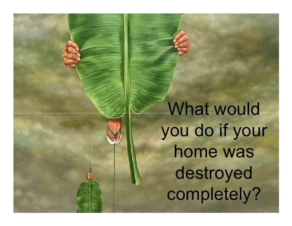 What would you do if your   home was   destroyed  completely?