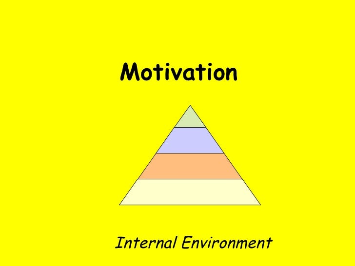 Motivation Internal Environment