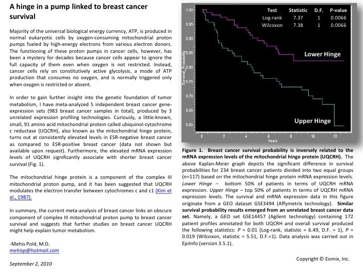 A Hinge In A Pump Linked To Breast Cancer Survival