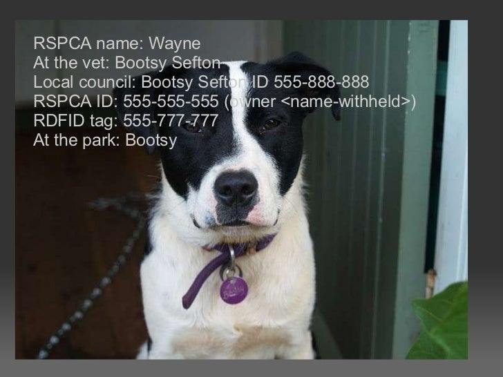RSPCA name: Wayne At the vet: Bootsy Sefton Local council: Bootsy Sefton ID 555-888-888 RSPCA ID: 555-555-555 (owner <name...