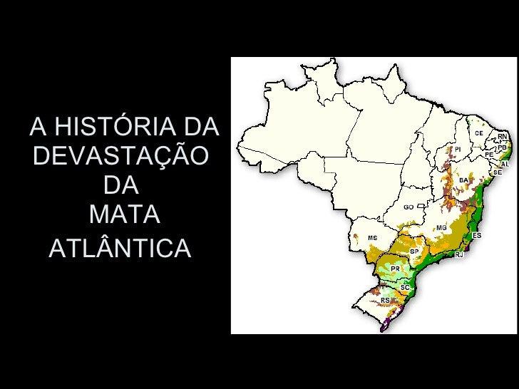 A HISTÓRIA DA DEVASTAÇÃO  DA  MATA ATLÂNTICA