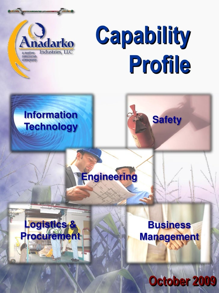 AI Capability Profile October 2009 (2)