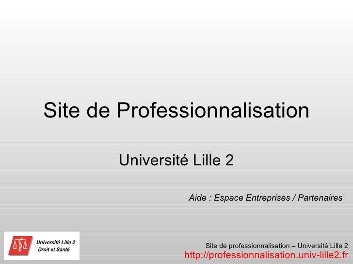 Site de Professionnalisation Université Lille 2 Aide : Espace Entreprises / Partenaires