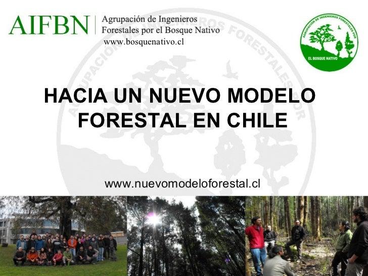 Aifbn modelo forestal 2012