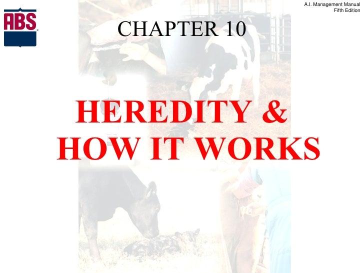 CHAPTER 10 <ul><li>HEREDITY & HOW IT WORKS </li></ul>