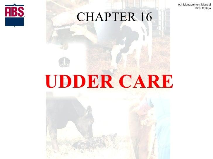 Ai manual chapter 16