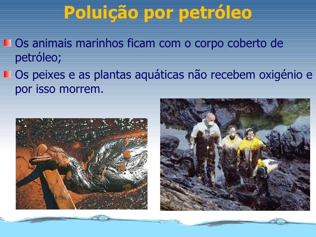 Poluição por petróleoOs animais marinhos ficam com o corpo coberto depetróleo;Os peixes e as plantas aquáticas não recebem...