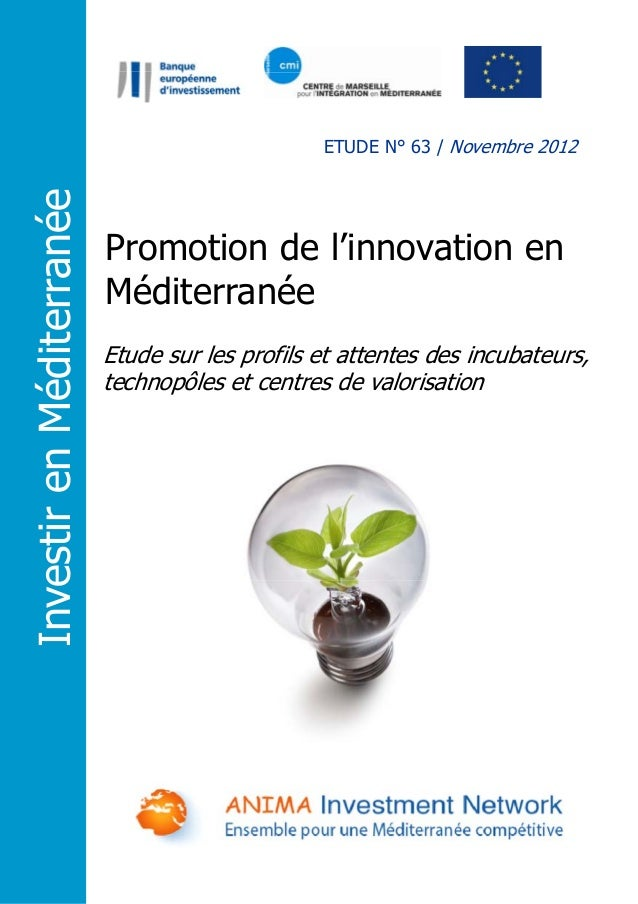 Promotion de l'innovation en Méditerranée Etude sur les profils et attentes des incubateurs, technopôles et centres de val...