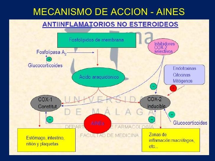 Feldene piroxicam): side effects, interactions, warning